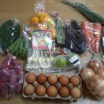 【ふるさと納税】長崎県 松浦市『旬のお野菜+産みたて濃厚玉子』の大満足セット!が届きました