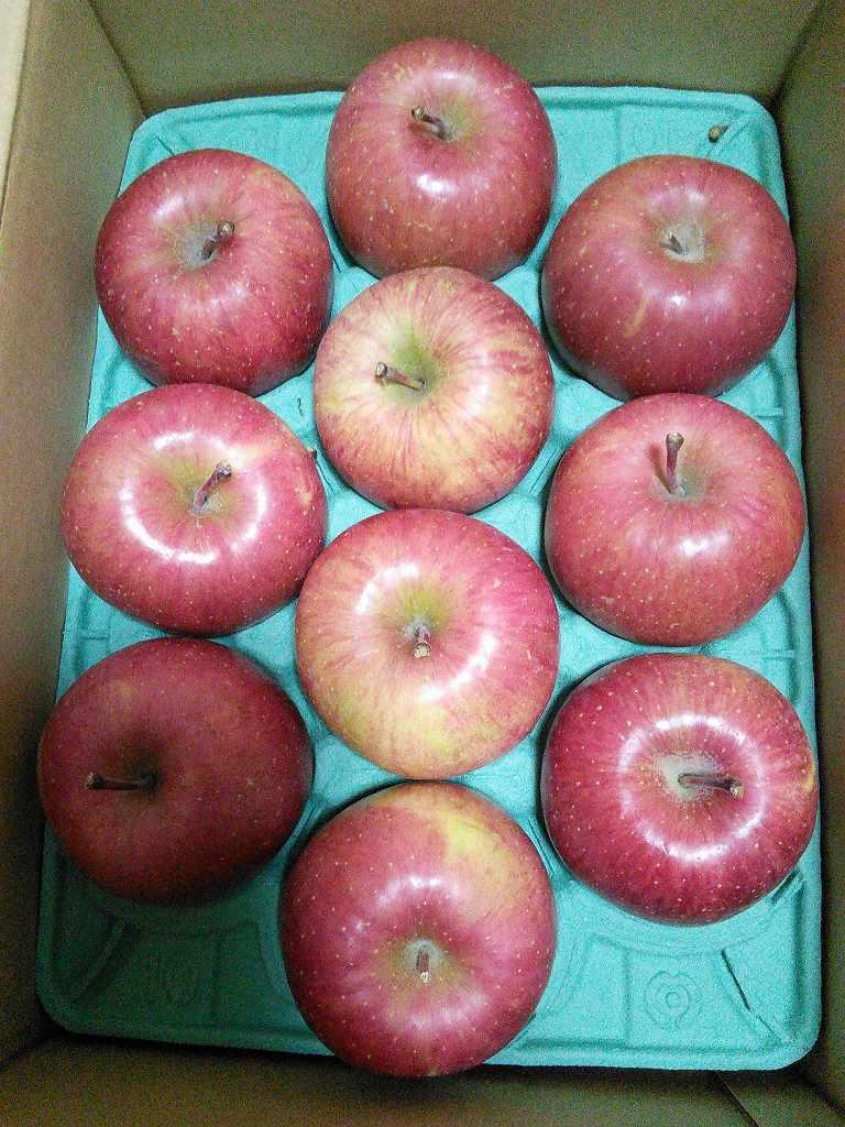 【株主優待】サンデー(7450)から優待が到着 葉とらずりんごが美味しいです