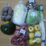 【ふるさと納税】青森県鰺ヶ沢町「世界自然遺産白神山地のまちから~旬の野菜おまかせセット~」が届きました